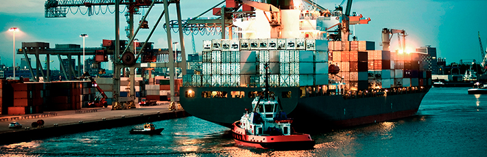 Header image of Maritime sector